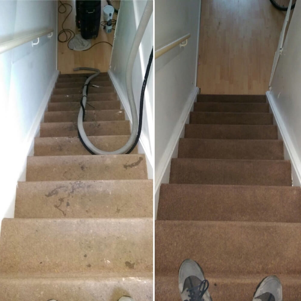 carpet cleaning Bedford