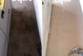 Heavy carpet stain removal Kempston